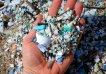 Preocupación medioambiental: descubren microplásticos en tejidos y órganos humanos