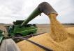 Cuántos dólares ingresarán al país por la soja, el trigo y el maíz