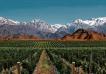 Ranking Forbes: Mendoza, el único destino argentino dentro del TOP 10